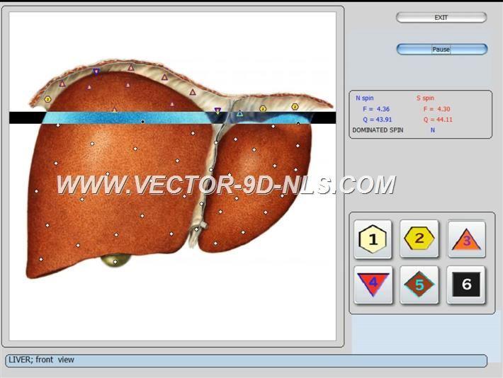 vector 8d 9d nls   software (13)