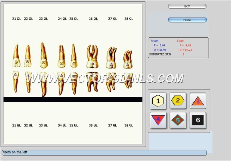 vector 8d 9d nls   software (17)