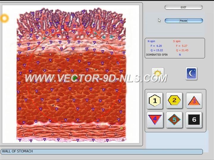 vector 8d 9d nls   software (25)