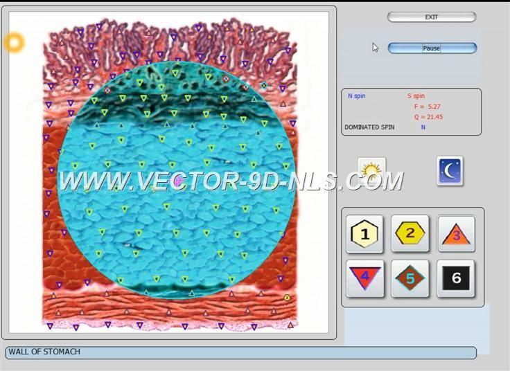 vector 8d 9d nls   software (26)