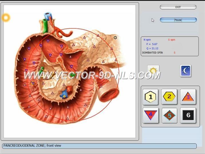 vector 8d 9d nls   software (27)