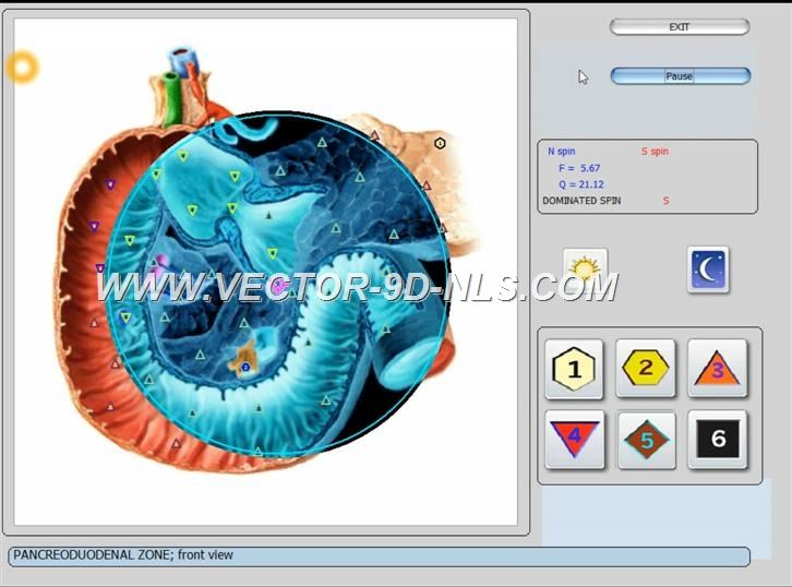 vector 8d 9d nls   software (28)