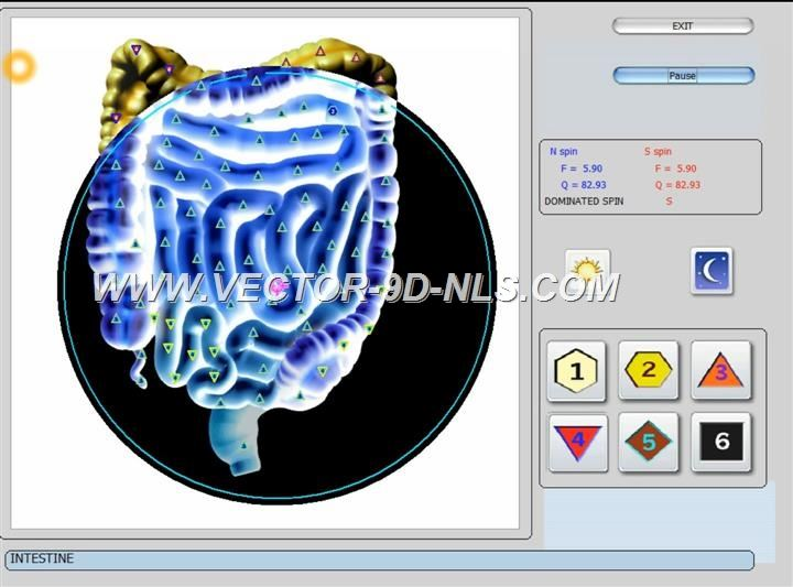 vector 8d 9d nls   software (32)