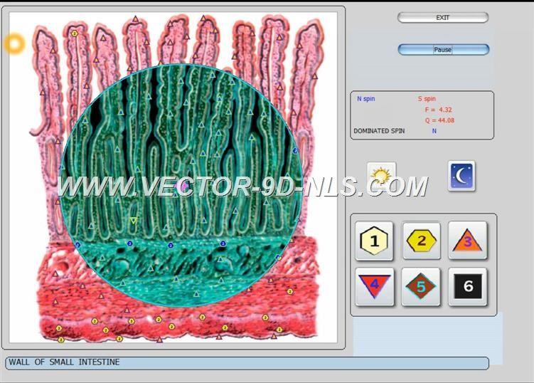 vector 8d 9d nls   software (36)