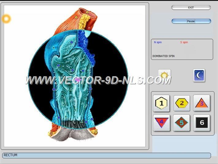 vector 8d 9d nls   software (42)