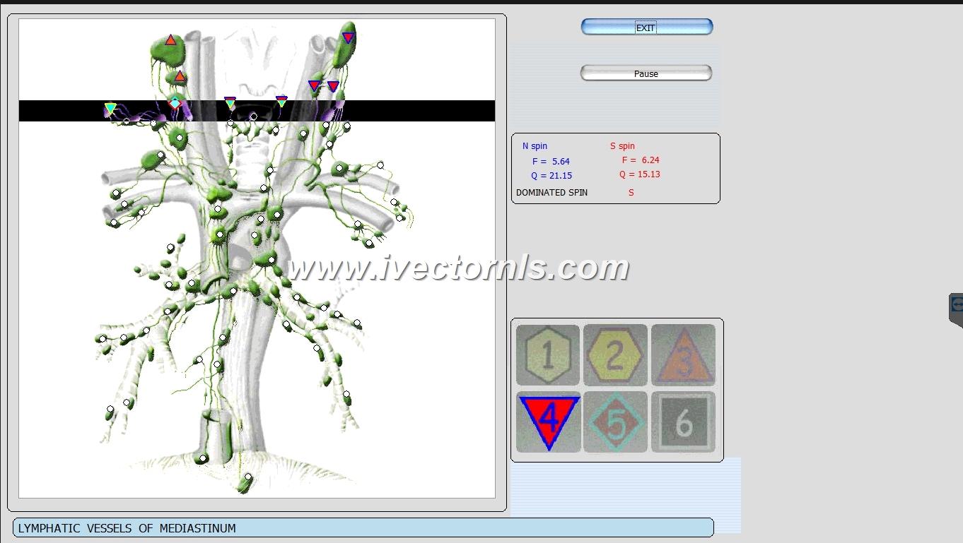 9d nls vector